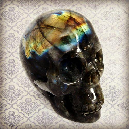 Labradorite skull - Empty casket- GOTHIC