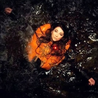 Kate Bush -Before the Dawn- Some thoughts on the gig of a life time