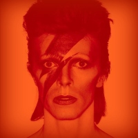 Bowie Is...a part of me
