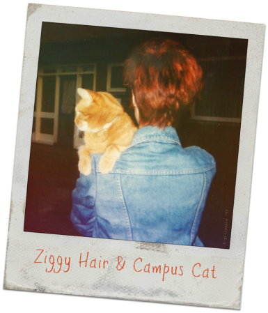 ziggy-hair-brandy-the-cat